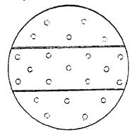 Составное дырчатое деревянное дно для заторного или цедильного чана